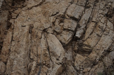 Fold in outcrop, without scale.  Image credit: Bill Mitchell
