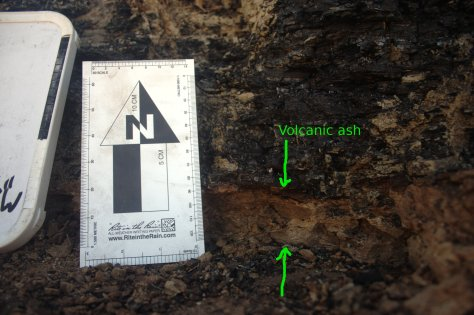 Volcanic ash, with scale bar for scale.   Image credit: Bill Mitchell.