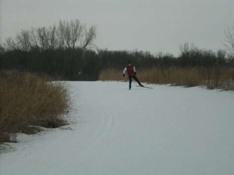 Cross-country skiing in Minnesota.