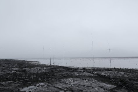 Antenna Lake, Atlas Cove, Heard Island.  Rain fell fast enough to flood much of the low-lying volcanic sand plain near our camp.  We were glad not to have camped there, and the antennas still worked.  It looks quite other-worldly, with the dark, broken lava flows and fog concealing the mountain.  Image credit: Bill Mitchell (CC-BY).