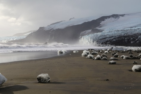 Glacial ice on the beach at Corinthian Bay, Heard Island.  Image credit: Bill Mitchell (CC-BY).