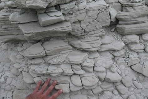 Spheroidal weathering of finely-laminated strata.  Hand for scale.  Image credit: Bill Mitchell (CC-BY).