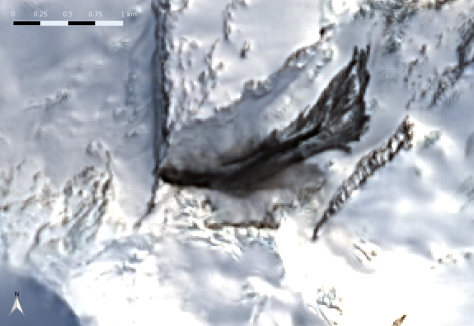 Close-up of landslide on Compton Glacier, Heard Island.  Several flow paths of dark rock are evident here.  Image processing: Bill Mitchell (CC-BY), data from USGS/Landsat 8.