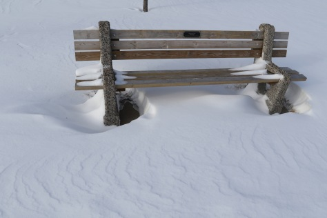 Park bench with snow scoop.
