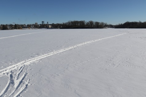 Minneapolis on a sunny, snow-covered day.